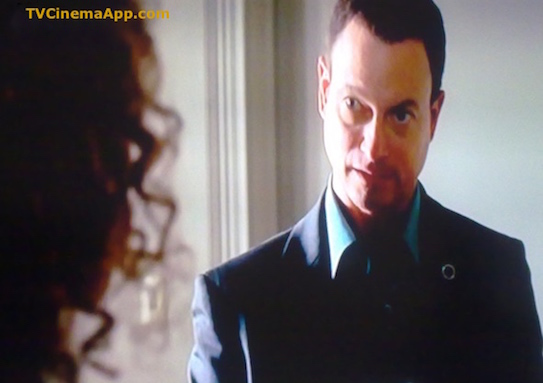 I Watch Best TV Photo Gallery: Gary Sinise as Mac Taylor on CSI NY.