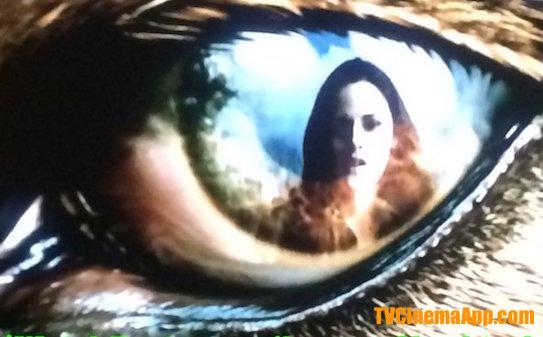 iWatchBest - TVCinemaApp: Horror Film, Chris Weitz's The Twilight Saga: New Moon, Kristen Stewart in the eyes of the wolf. Starring Robert Pattinson, Kristen Stewart, Taylor Lautner, Ashley Greene.