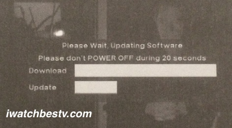Satellite TV Installation: Updating and Upgrading Software.