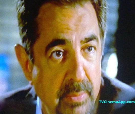 I Watch Best TV Photo Gallery: David Rossi Portraying Joe Mantegna on the TV serial Criminal Minds.