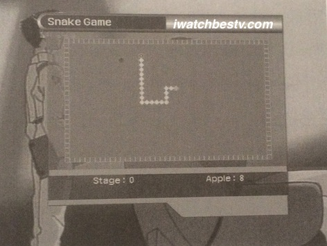 Satellite TV Installation: The Snake Game in the Utility in the Main Menu Operation.